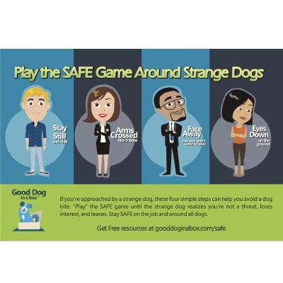 Adult SAFE Dog Bite Prevention Game Card